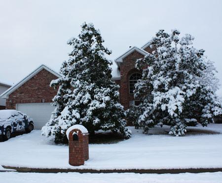 House-Snow-2-11-10